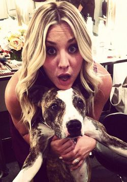 "Kaley Cuoco aka ""Penny"" is a loving a devoted pit bull advocate.  Love Penny even more now!"