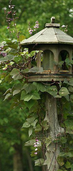 très belle mangeoire pour oiseaux,