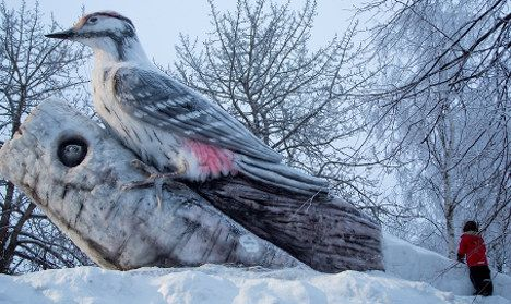 Sweden's Luleå had previously hosted a giant woodpecker (ice sculpture). Photo: Visit Luleå/Fedrik Broma