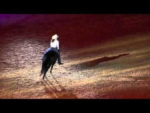 Stacey Westfall and Roxy perform bareback + bridleless at the opening ceremony of the WEG 2010