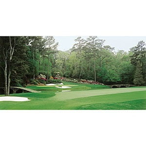 32 best images about golf murals on pinterest for Augusta national wall mural