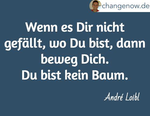 Wenn es Dir nicht gefällt, wo Du bist, dann beweg dich. Du bis kein Baum. André Loibl