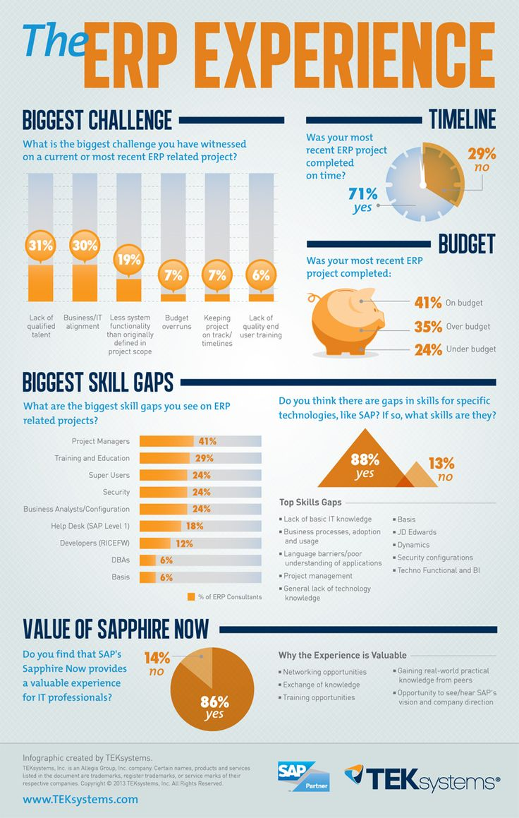 ERP Experience [Infographic]