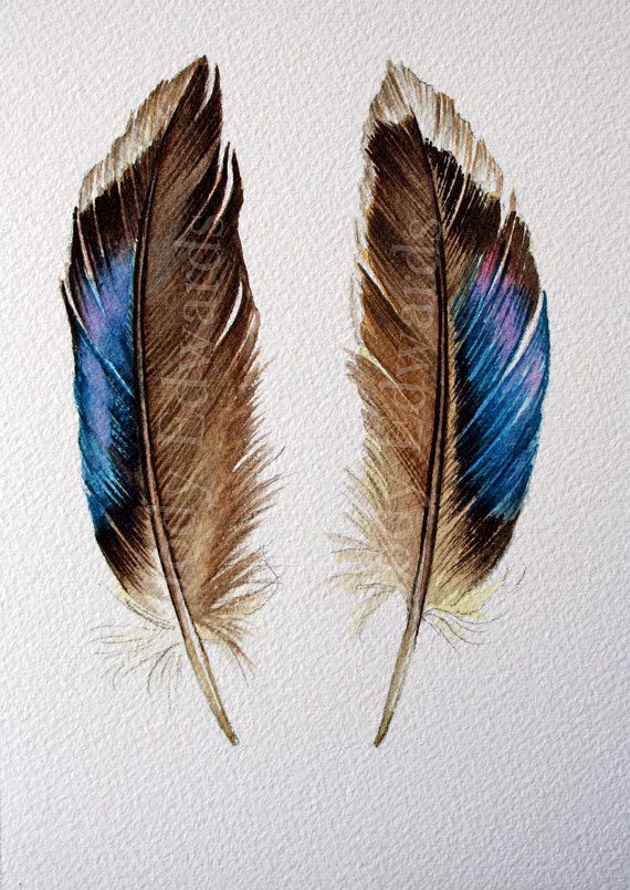 Two feathers original watercolor feather painting for Painting feathers on canvas