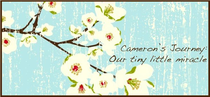 Cameron's Journey ♥Mom Blog, Homey Home, Friends, Dresses, Crafts Blog, Deco Mesh Wreaths, Forts Worth, Fabrics Stores, Crochet Headbands