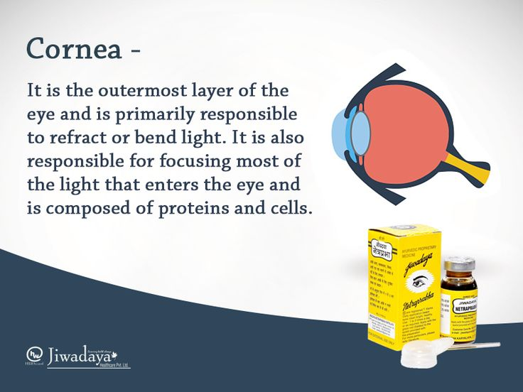 Know your eyes series. We usually know few terms about our eyes like - #lens, #eyelashes, #tears, #pupil etc, but we hardly know their functions. Come let's know their work too. Keep checking this page for more.Know more at www.netraprabha.com #cornea #eyes #instaeyes #beautifuleyes
