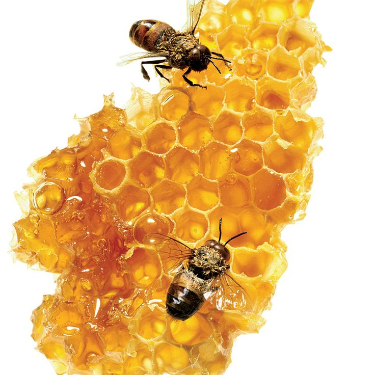 RAW HONEY: LIQUID GOLD IN YOUR PANTRY. Raw honey is anti-viral, anti-bacterial and anti-fungal, making it one of the most healing substances on earth. It is also highly nutritious. Honey is a natural multivitamin. It contains significant amounts of B1, B2, B3, B5, B6, C, magnesium, potassium, calcium, sodium chlorine, sulfur and phosphate. Honey has been used historically both internally and externally for a variety of concerns.