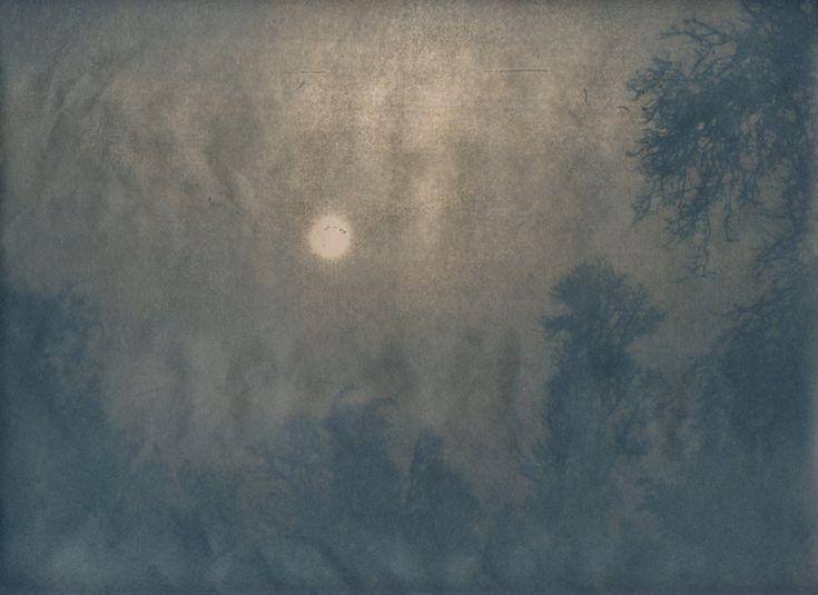 Daaniel Clauzier: Ciel brumeux, fin de journée, parc de Mornay, Charente Maritime, hiver 2003, tirage cyanotype sur papier Sumi-E d'après négatif sur rhodoïd réalisé à partir d'une photographie argentique, 2018