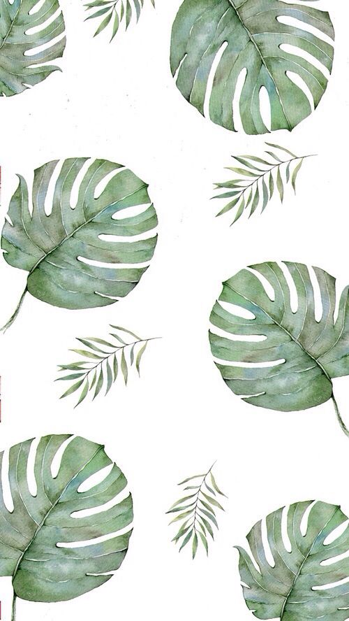 Tumblr palm leaf iphone wallpaper iphone wallpapers - Deko wallpaper ...