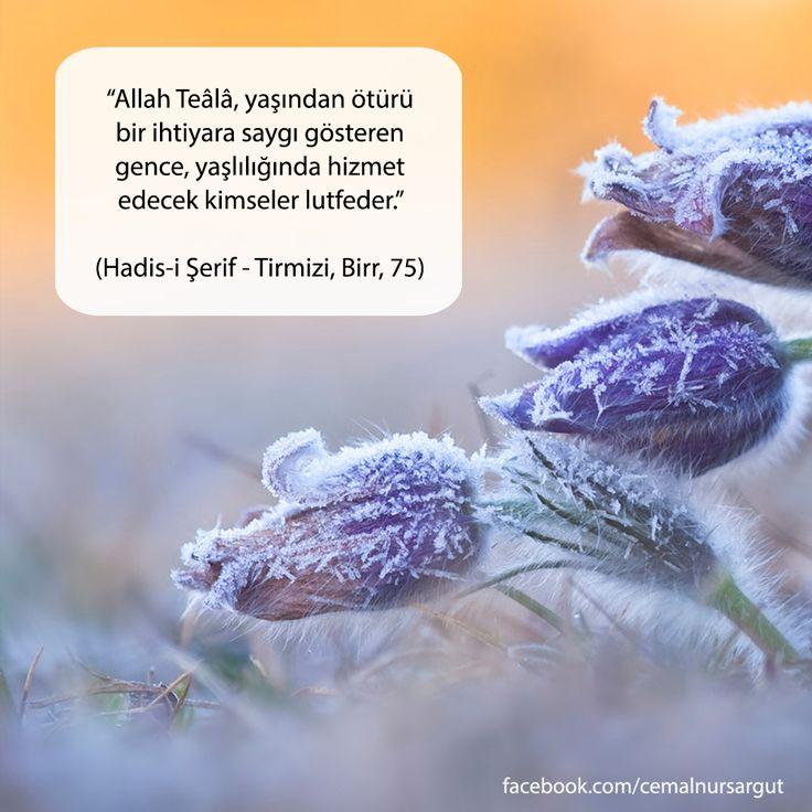 """""""Allah Teâlâ, yaşından ötürü bir ihtiyara saygı gösteren gence, yaşlılığında hizmet edecek kimseler lutfeder."""" (Hadis-i Şerif - Tirmizi, Birr, 75)"""