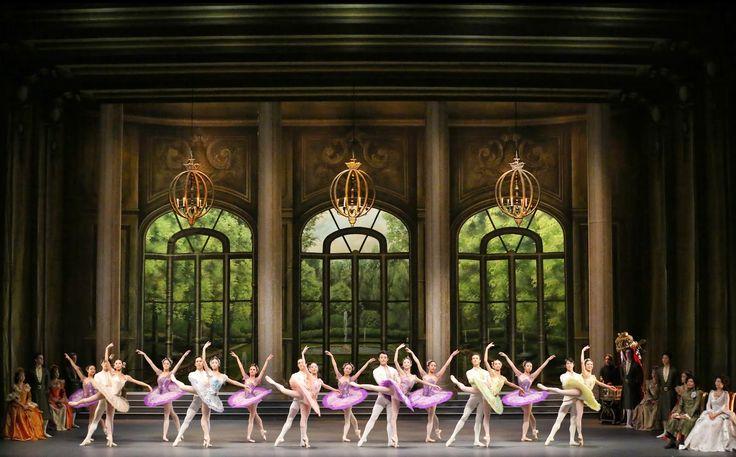 싱가포르 댄스 디어터의 '잠자는 숲속의 미녀'