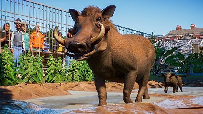 Pin On Planet Zoo Has Great Poop Physics Runaway Animals And Loads Of Other Good Animal Action
