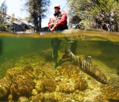 last mountain lake fishing guides