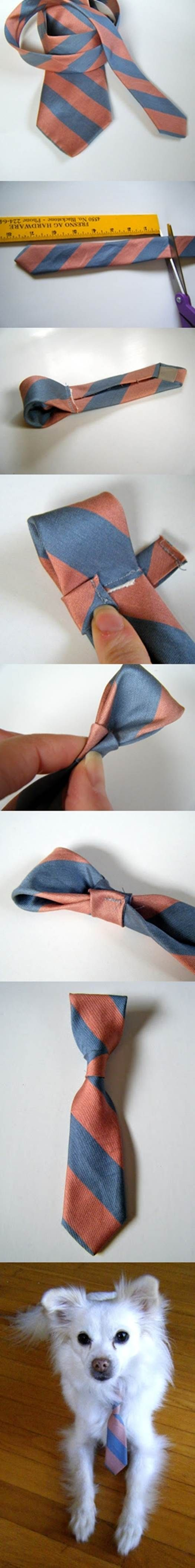 DIY Dog Neck Tie from a Recycled Neck Tie 2