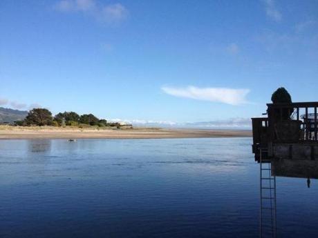 the lagoon essay