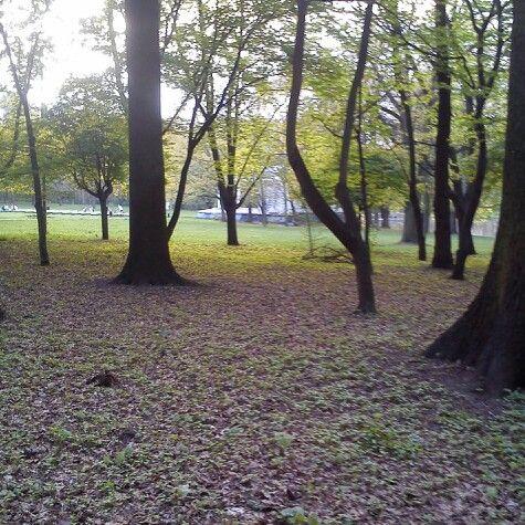 Park im. Adama Mickiewicza, Lodz