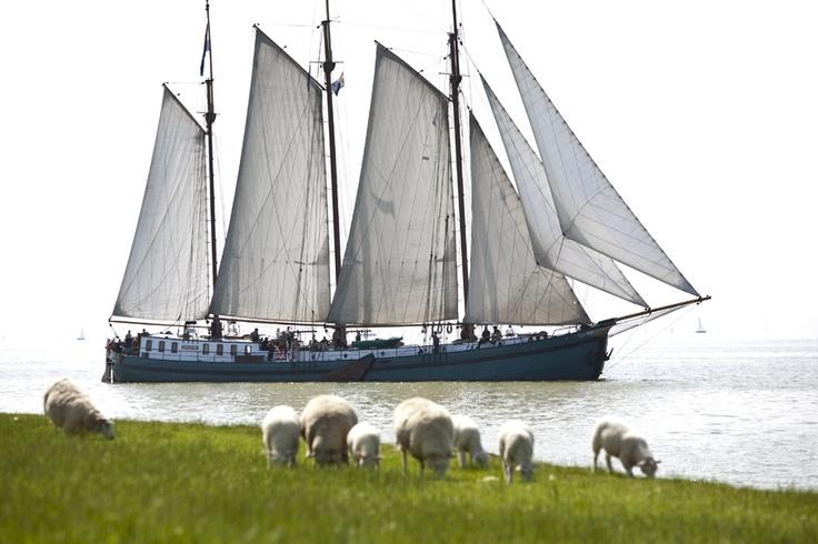 #Zeilen op het #IJsselmeer op een onze prachtige #zeilschepen.
