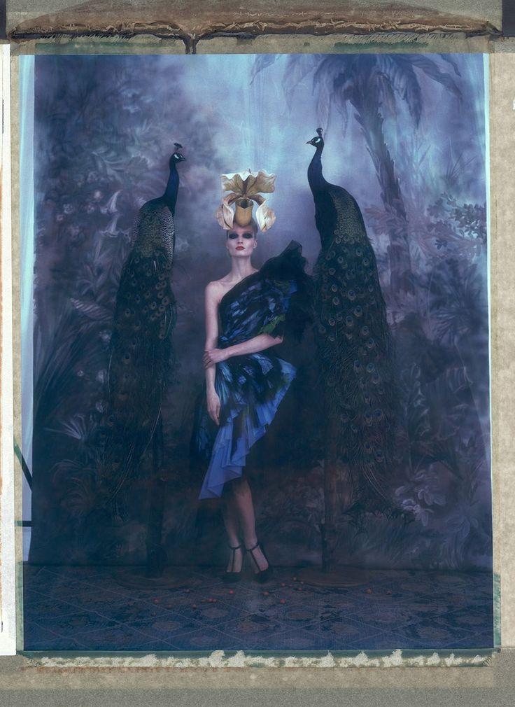 L'arche de Noe XXXIV - Gaultier – Cathleen Naundorf – Photograph