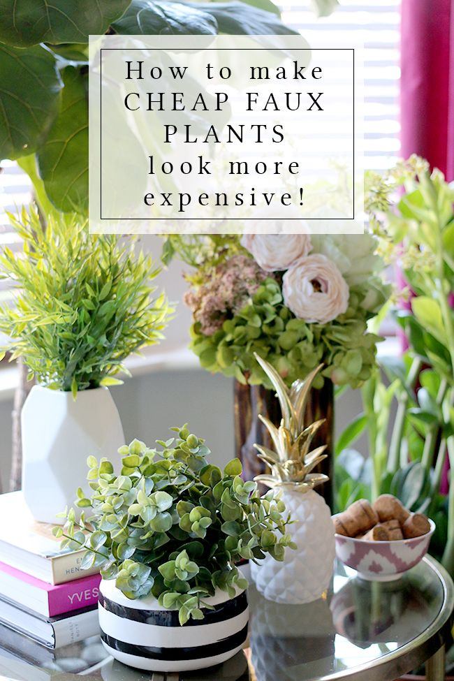 Bought some faux plants at Ikea? Don't be stuck with the awful pots they come in! Check out my post and video to see how to make them look expensive!
