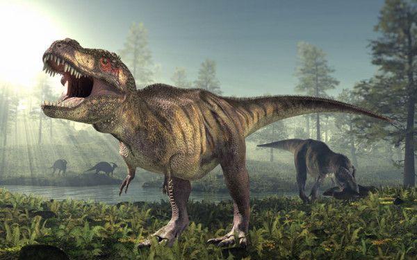 Tyrannosaurius-Rex
