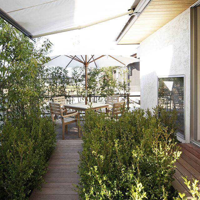 リビングからそのまま出られるデッキには、豊かな緑に囲まれた庭をデザイン。四季の変化を楽しみながら、自然と共存する豊かな暮らしは憧れです✨ . #木造 #注文住宅#新築#工務店#春日井#オーニング #名古屋#kisetsu#マイホーム#家#キッチン収納 #照明 #窓 #テーブル #収納#設計#建築#ソファ #ウッドデッキ #インテリア#白い壁 #自然素材#壁 #リビング #ガーデニング #水栓 #庭#暮らし