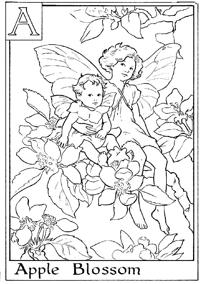 Fairy Printable Coloring Page A Is For Apple Blossom