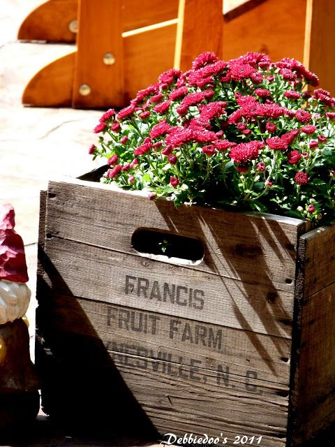 """#Fall decorating ideas with old crates, #pumpkins and #burlap outdoors. This would work so well with my """"Mastracco/ Russo"""" crate!"""