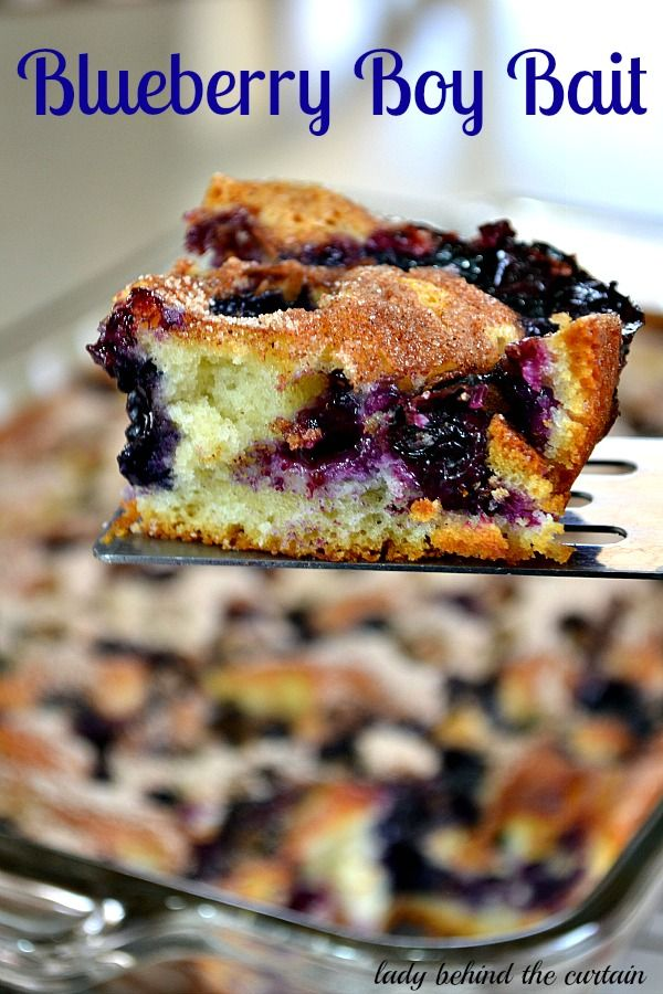 Blueberry Boy Bait {Blueberry Coffee Cake} Recipe ~ Says: This recipe originates from 1954 and was titled Blueberry Boy Bait by a 15 year old Pillsbury contestant. This cake is the perfect dessert to make when you're in a pinch.  You can have this ready for the oven BEFORE the oven is ready for you!