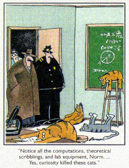 """""""Notice all the computations, theoretical scribblings, and lab equipment, Norm. ... Yes, curiosity killed these cats."""""""