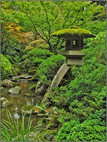 Japanese Moss Garden... Love The Lantern