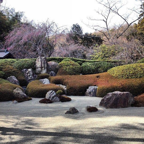 die besten 17 bilder zu japanischer garten auf pinterest | gärten, Garten Ideen
