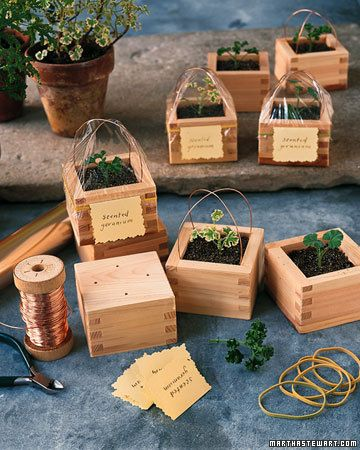 DIY Sake-Box Planters:  Give a botanical friend a gift with a creative twist by placing the flowers or herbs in a wooden sake box topped with plastic wrap.