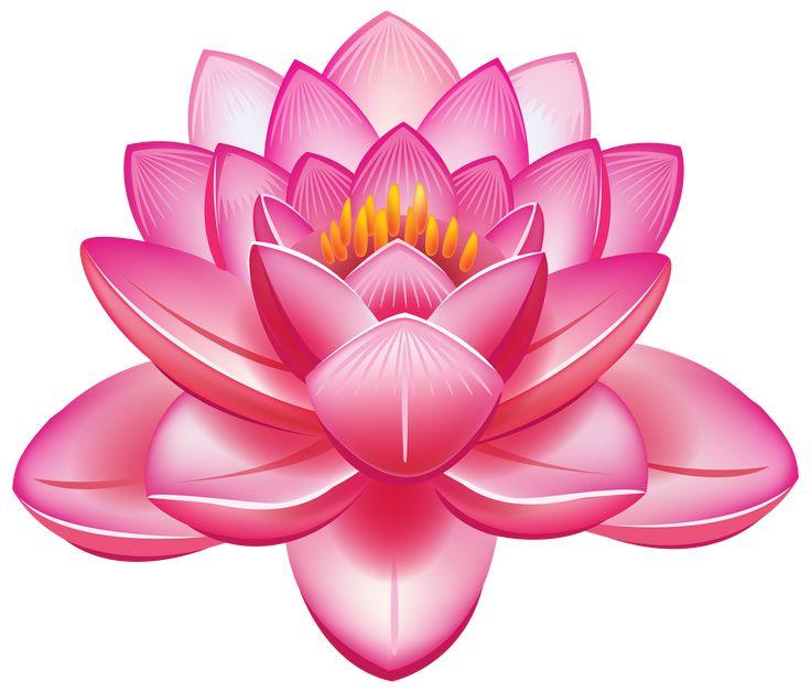 Image result for lotus flower divider website