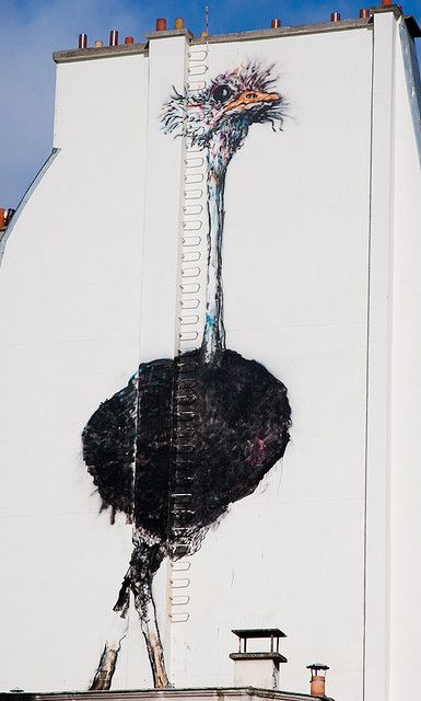 Avestruz! Paris #streetart #arteurbana #urbanart #arte #art #rua #street