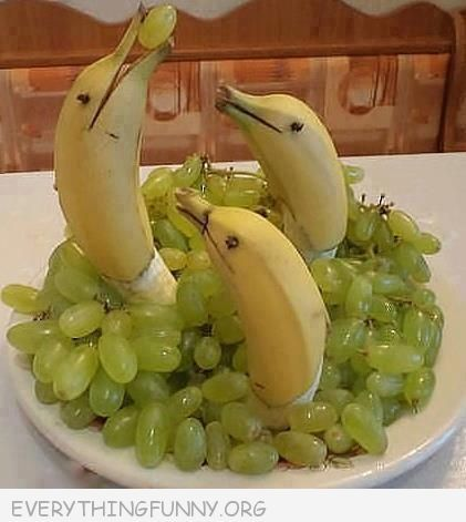 That's too cute to eat. Dolphin Bananas with grapes