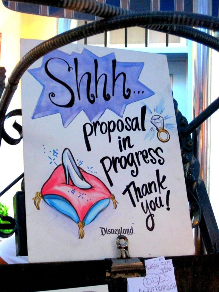 Disney World Caricature Cinderella Proposal_1