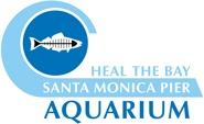 The Santa Monica Pier Aquarium is Heal the Bay's public marine-education center located beach-level, just below the Carousel at the world famous Santa Monica Pier. You will be treated to a unique view into the ocean world just steps from our Aquarium's doors.  The family-friendly facility is home to more than 100 species of marine animals and plants – all found in the Santa Monica Bay.