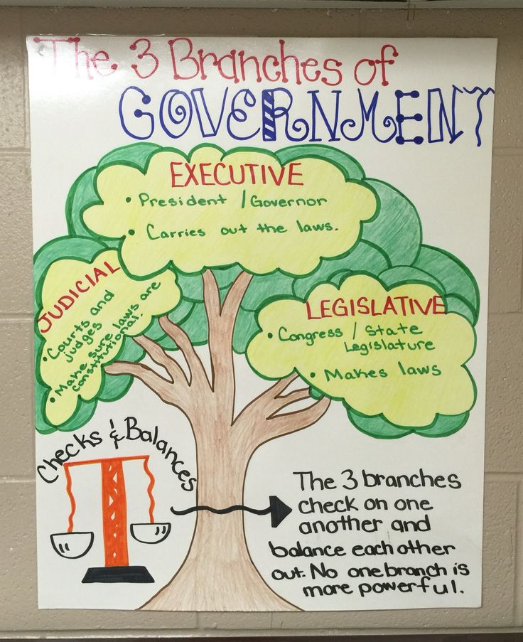 3 Branches of Government Anchor Chart                              …                                                                                                                                                                                 More