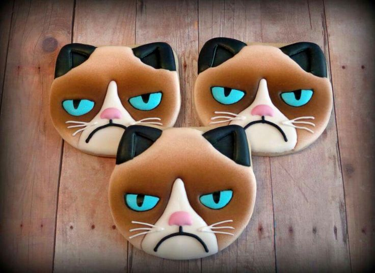 Jackie Williams Broome:  Grumpy Cat cookies.  Awesome!