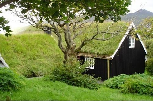 I want this roof for my house when Britt builds it...until then...the goat barn!: Green Roofs, Idea, Dream, Color, Cottages, Architecture, Travel, Grass Roof, Photo