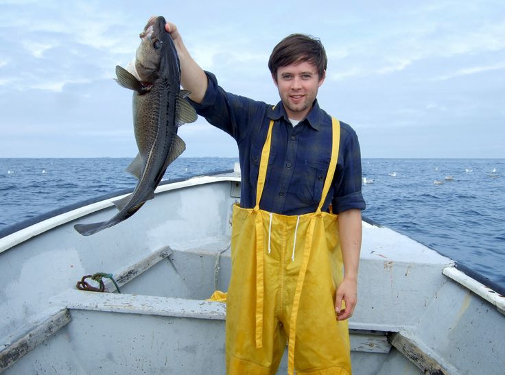 Fish in Newfoundland means Cod - the humble fish that changed the world.  #Outport #FogoIsland #Tourism #Cooperative Society #Fishing
