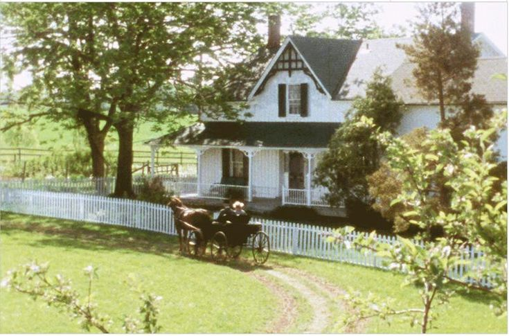 Anne of Green Gables                                                                                                                                                                                 More