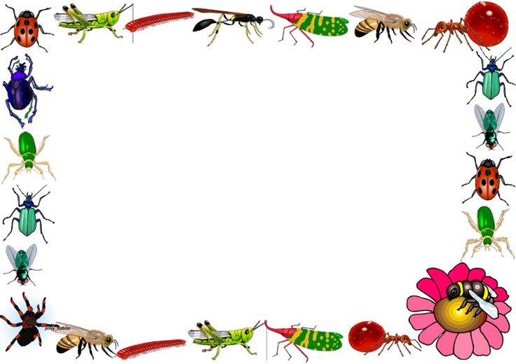 insects themed lined paper and page borders for your English writing ...