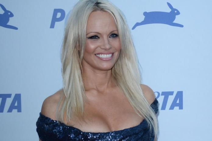 Pam Anderson, simply just poor money management. She can be seen in some movies like Scary Movie 3, Costa Rican Summer, Barb Wire and Blonde and Blonder. She was paid about $60K for her role in Baywatch back in 1989, which back then was probably a lot of money for someone as young as she was. It is said that she once owed $137,000 in taxes back in 2012 and even was on the Top 500 Delinquent Taxpayers List, not a good list to be on