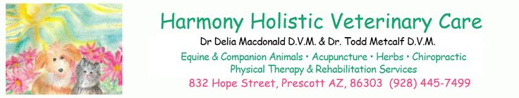 Dr. Delia Macdonald, DVM, CVA integrative vet at Harmony Holistic Veterinary Care in Prescott, Arizona http://www.harmonyvetcare.com/learn-about-dr-todd-metcalf/ http://www.bestcatanddognutrition.com/roger-biduk/list-of-over-900-u-s-holistic-and-integrative-veterinarians/ Roger Biduk