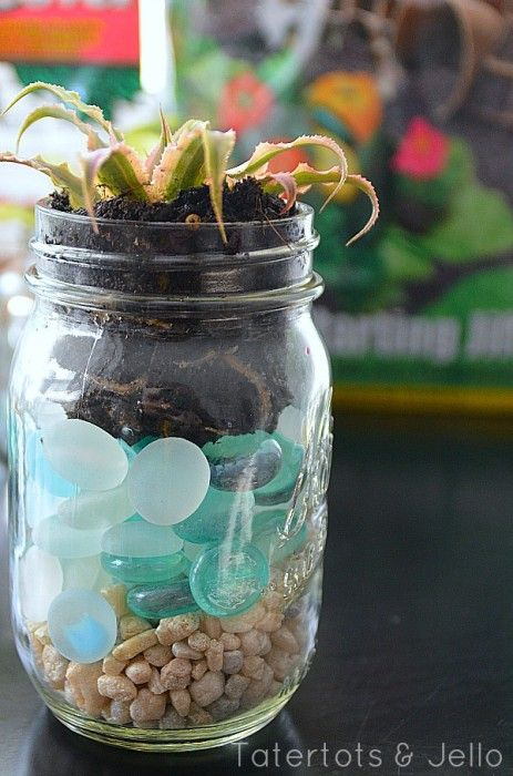 95 best diy mason jar glass makeovers images on pinterest home i must make these layered mason jar succulents find this pin and more on diy solutioingenieria Image collections