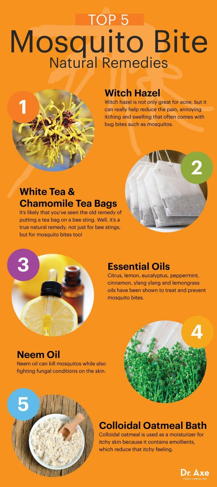Top five home remedies for mosquito bites - Dr. Axe http://www.draxe.com #health #holistic #natural