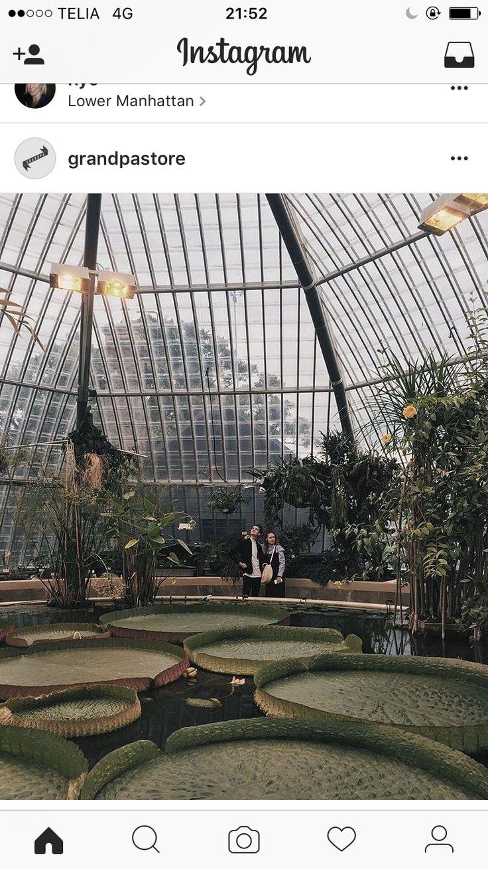 Bergianska Trädgården