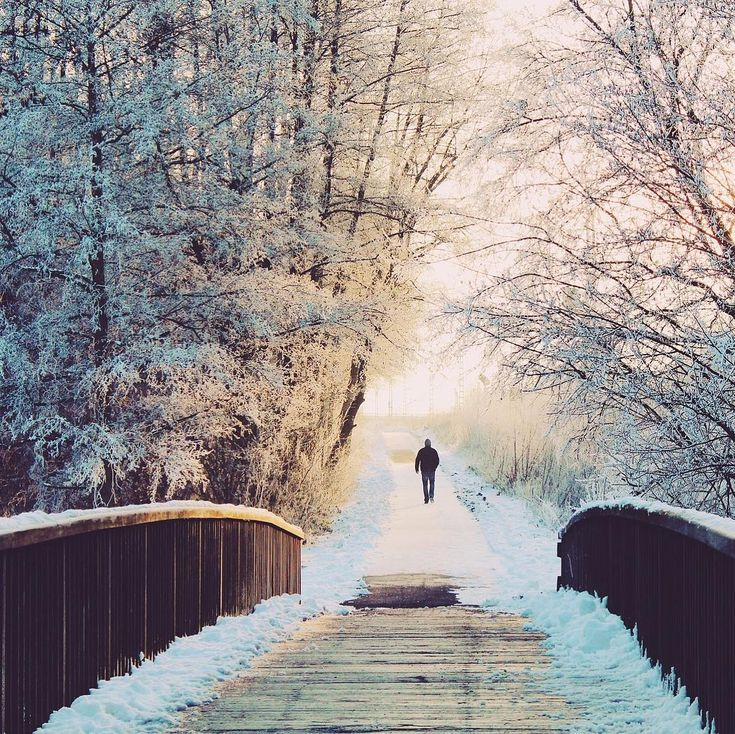 Der Wald lädt uns in den kalten Monaten zum verschneiten Winterspaziergang ein  Was unternimmst du wenn die Welt draußen im Schnee versinkt? / In the cold months the forest invites us to go for a snowy walk. What do you do when the world outside sinks in the snow? #forest #winterlandschaft #winterwonderland #nature #naturelovers #snowy #coldoutside #biomasse #renewableenergy #kwb #kwb_die_biomasseheizung