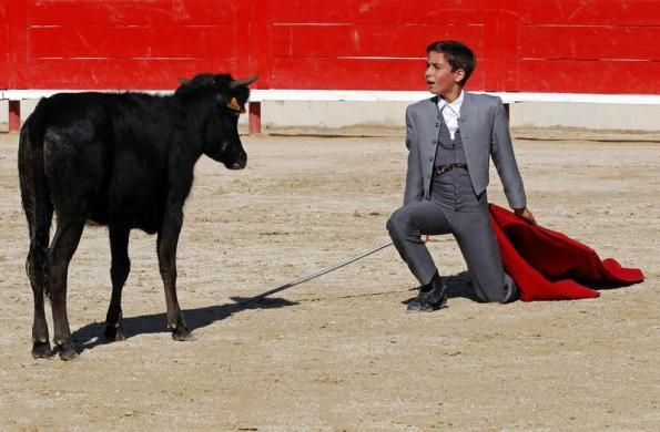 Solal, a twelve-year-old toreador apprentice of the Nimes bullfighting school, nicknamed Solalito, performs a muleta pass during a beginner's bullfight (becerrada) at the bullring of Bouillargues, near Nimes, October 5, 2013. REUTERS/Jean-Paul Pelissier